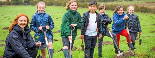 Lost Woods Children's Woodland 2