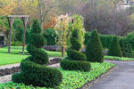 Bellahouston Park - Walled Garden Displays a larger version of this image in a new browser window