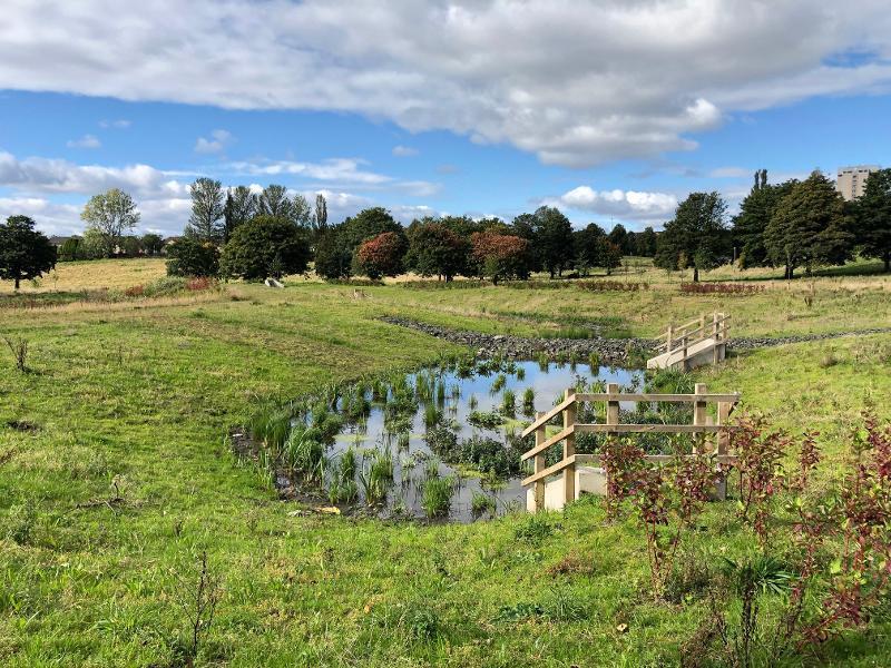 Cranhill basin 1